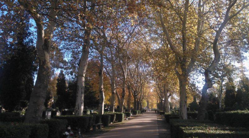 S  1D18 800x445 - Parkowy cmentarz przy Wiśniowej