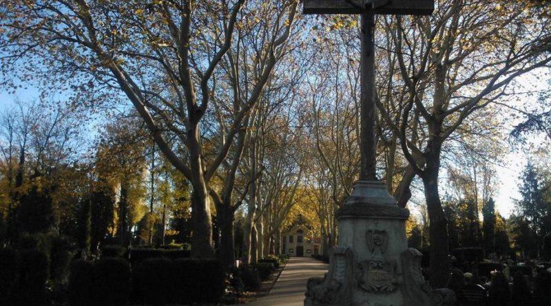 S  ED19 800x445 - Parkowy cmentarz przy Wiśniowej