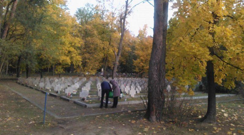 S  F469 800x445 - Miłostowo: korki wokół cmentarza