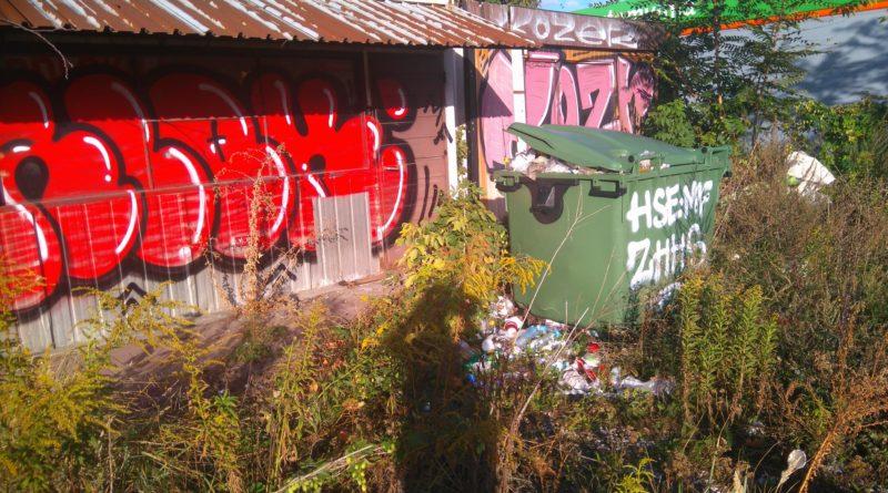 Wielkie sprzątanie w centrum Poznania