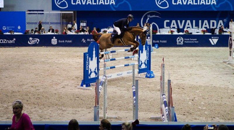 cavaliada 13 800x445 - Cavaliada - zdjęcia z imprezy