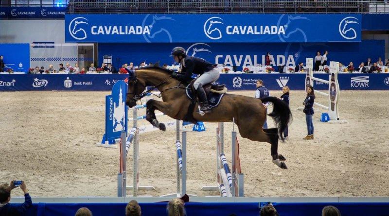 cavaliada 3 800x445 - Cavaliada - zdjęcia z imprezy