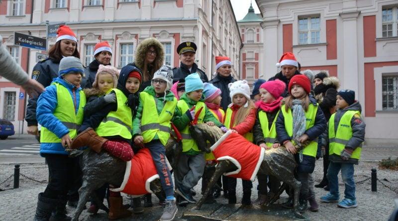 koziolki 15 800x445 - Poznański koziołki są już gotowe na zimę!
