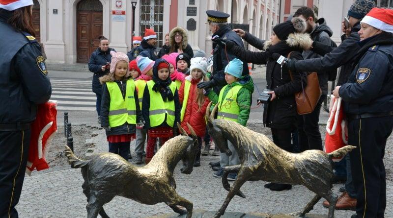 koziolki 9 800x445 - Poznański koziołki są już gotowe na zimę!