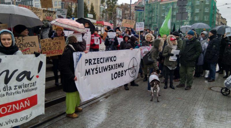 """protest 2 800x445 - Protest """"Poznań solidarny z dzikami"""""""