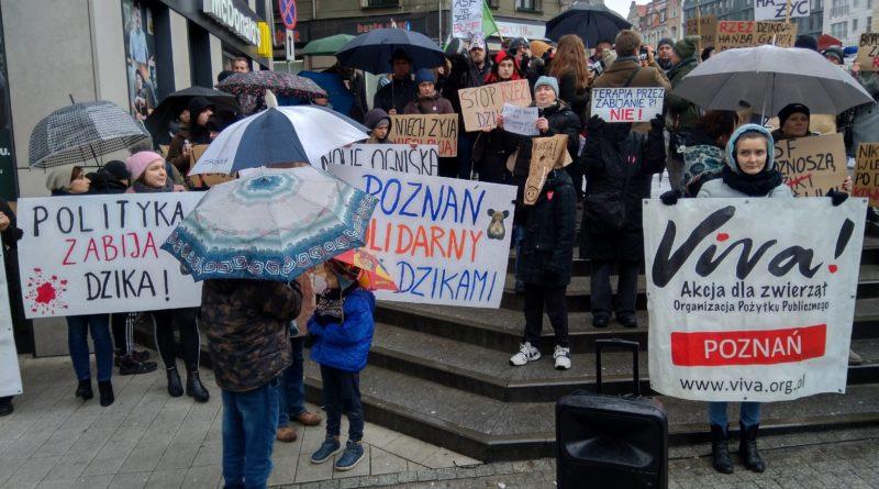 """protest 5 800x445 - Protest """"Poznań solidarny z dzikami"""""""