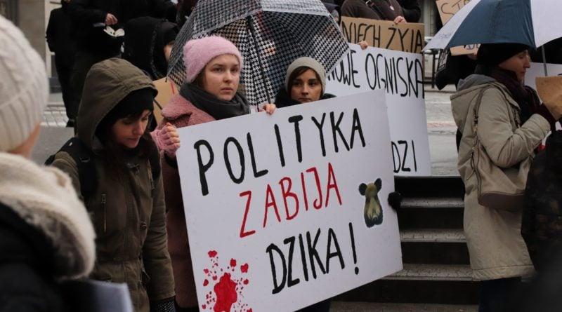 protest dziki 12 800x445 - Poznań: Minister chce przywrócić polowania zbiorowe? Z powodu ASF
