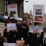 protest dziki
