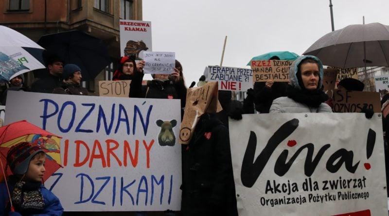 """protest dziki 5 800x445 - Protest """"Poznań solidarny z dzikami"""""""