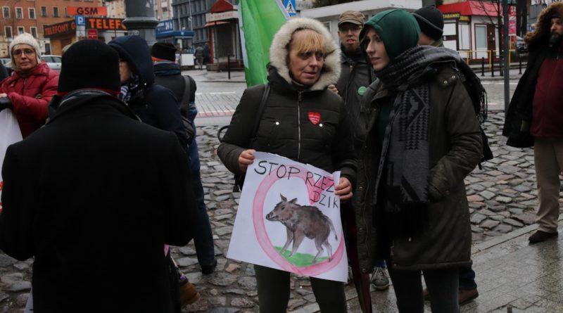 """protest dziki 6 800x445 - Protest """"Poznań solidarny z dzikami"""""""