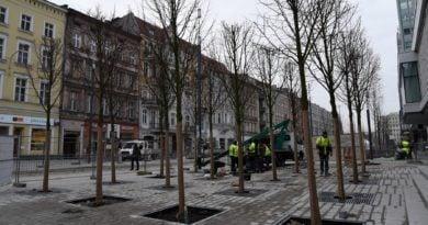 sw. marcin 2 390x205 - Poznańskie Inwestycje Miejskie podsumowują rok