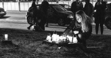 drzewa park wilsona 11 390x205 - Poznań: W miejscu wycinki drzew zapalili... znicze