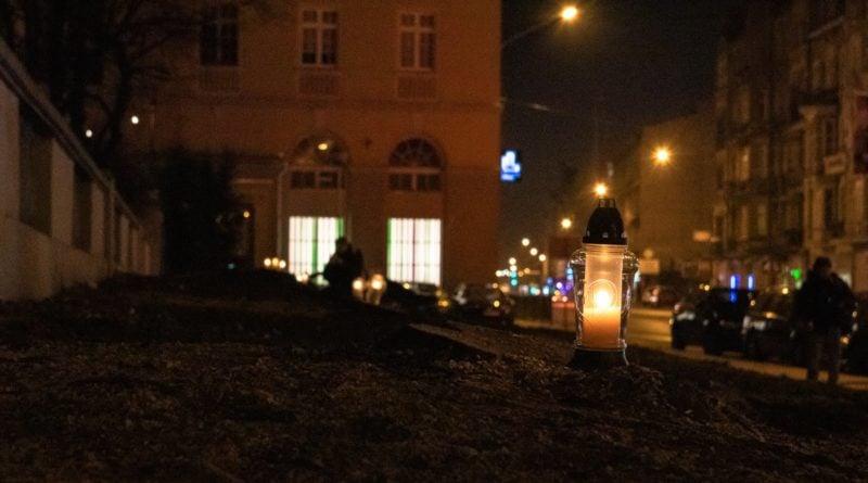 drzewa park wilsona 6 800x445 - Poznań: W miejscu wycinki drzew zapalili... znicze