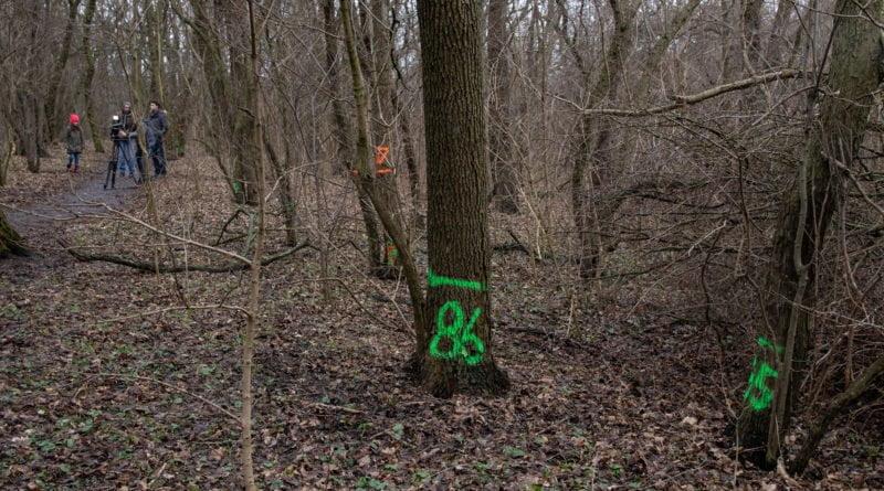 fort vii park 10 800x445 - Poznań: Petycja mieszkańców osiedla Lotników w obronie zieleni wokół Fortu VII