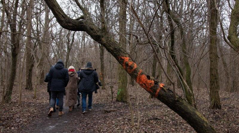 fort vii park 12 800x445 - Poznań: Petycja mieszkańców osiedla Lotników w obronie zieleni wokół Fortu VII