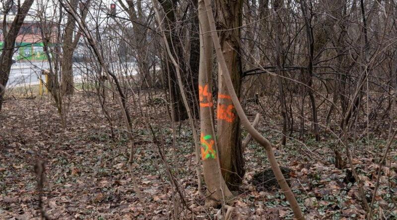 fort vii park 21 800x445 - Poznań: Petycja mieszkańców osiedla Lotników w obronie zieleni wokół Fortu VII