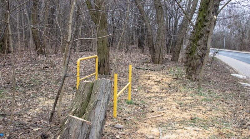 fort vii park 23 800x445 - Poznań: Petycja mieszkańców osiedla Lotników w obronie zieleni wokół Fortu VII