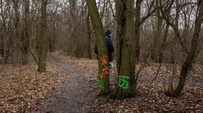 fort vii park 4 800x445 - Poznań: Petycja mieszkańców osiedla Lotników w obronie zieleni wokół Fortu VII
