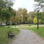 park wieniawskiego fot. tomasz dworek 150x150 - Ekspert: w miastach potrzebne są duże drzewa, a nie ich sadzonki