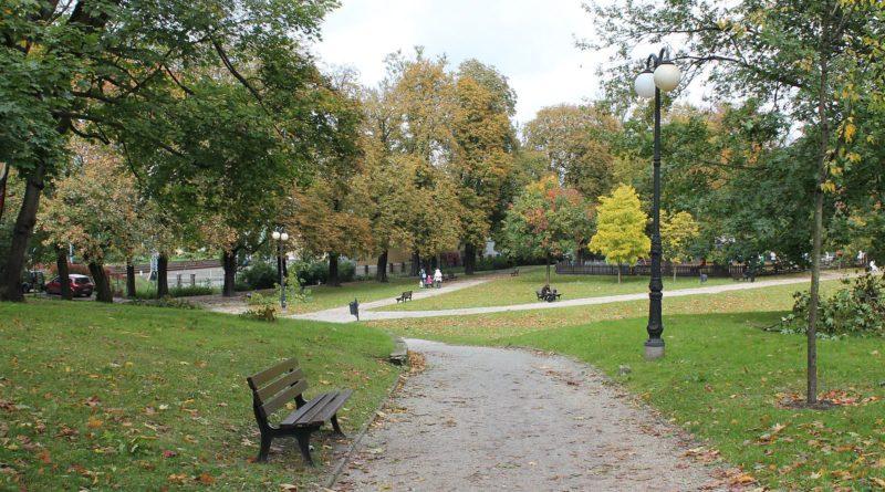 park wieniawskiego fot. tomasz dworek 800x445 - Ekspert: w miastach potrzebne są duże drzewa, a nie ich sadzonki