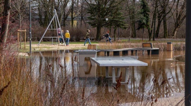 park wodziczki 2 800x445 - Poznań: kałuża w parku Wodziczki trafiła do... prokuratury