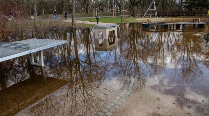 park wodziczki 3 800x445 - Poznań: kałuża w parku Wodziczki trafiła do... prokuratury
