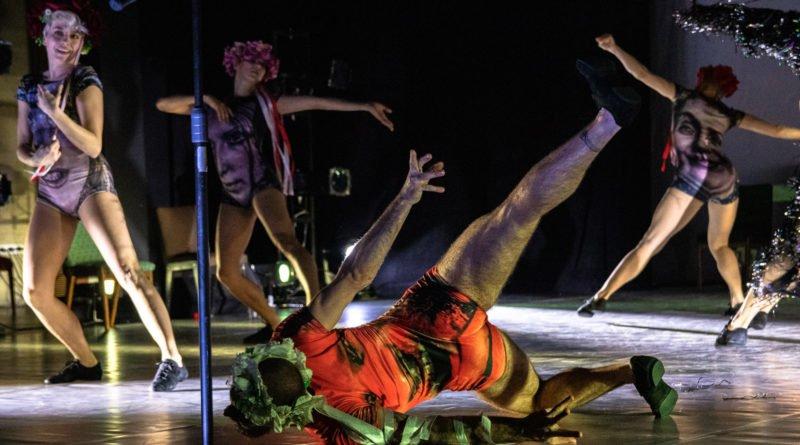 wesele poprawiny polski teatr tanca 20 800x445 - Wesele. Poprawiny reż. Marcin Liber - Polski Teatr Tańca obchodzi 45 lat