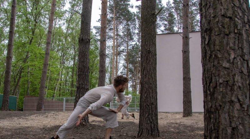 otwarcie lwiarni w nowym zoo 27.04 slawek wachala 32 800x445 - Performans - Polski Teatr Tańca w Nowym Zoo