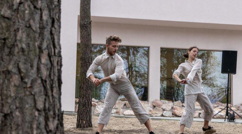 otwarcie lwiarni w nowym zoo 27.04 slawek wachala 47 800x445 - Performans - Polski Teatr Tańca w Nowym Zoo