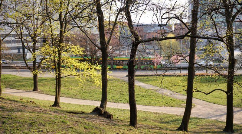 Park Drwęskich