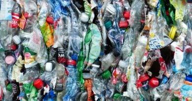 smieci plastikowe 1 390x205 - Konin:  Wszyscy chcą miasta bez plastiku