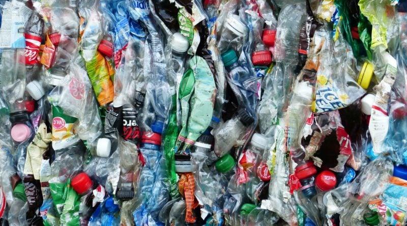 smieci plastikowe 1 800x445 - W Wałbrzychu będzie obowiązywać zakaz używania i posiadania jednorazowego plastiku