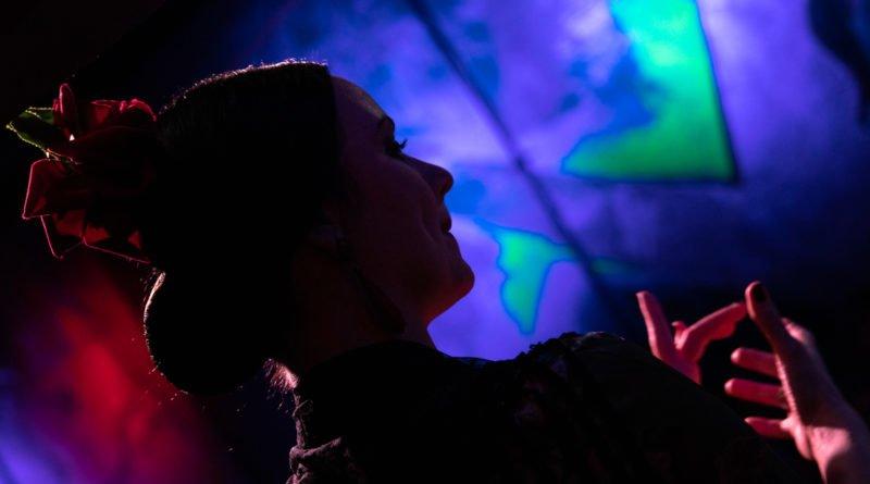 flamenco slawek wachala 58 800x445 - Entre Flamencos – Koncert muzyki i tańca Flamenco