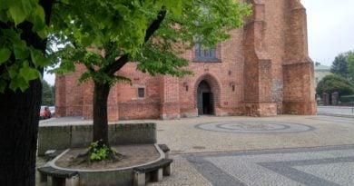 katedra ostrow tumski 4 390x205 - Religijność deklaruje 30 proc. Polaków. Do kościoła chodzi znacznie mniej