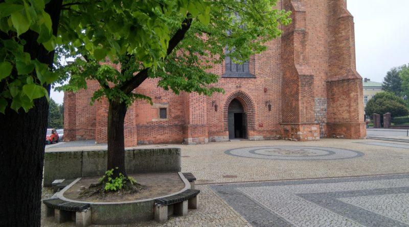 katedra ostrow tumski 4 800x445 - Poznań: Czterech kleryków zakażonych koronawirusem i dwie parafie z kwarantanną
