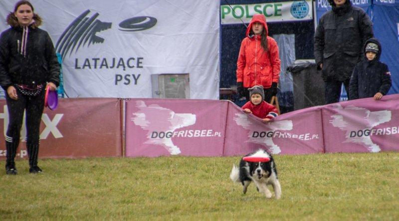 latajace psy slawek wachala 15 800x445 - Weekend latających psów w Poznaniu