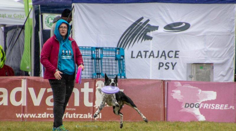 latajace psy slawek wachala 21 800x445 - Weekend latających psów w Poznaniu