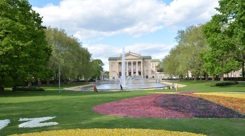 opera fot. karolina adamska 9 800x445 - Poznań: W mieście powstały dywany kwiatowe (zdjęcia)