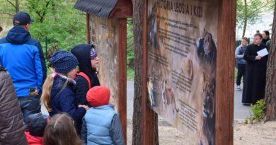 Poznański Budżet Obywatelski - jednym z projektów w poprzednich latach było schronisko dla lwów fot. Zoo Poznań