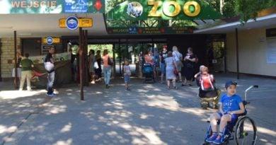 Noc Marzeń w zoo