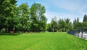 plywalnia park kasprowicza fot. posir 4 300x175 - Poznań: Nowe oblicze parku Kasprowicza. Bez betonu!