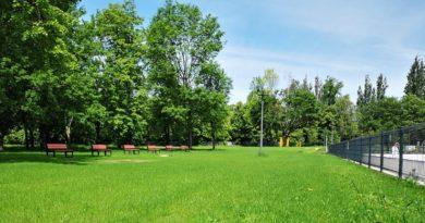 plywalnia park kasprowicza fot. posir 4 390x205 - Poznań: Parking - czy nielegalny skład starych samochodów na Reymonta?