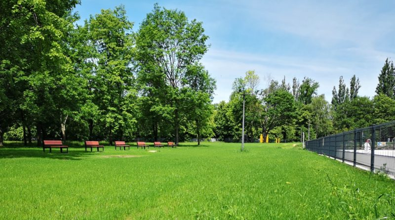 plywalnia park kasprowicza fot. posir 4 800x445 - Poznań: Parking - czy nielegalny skład starych samochodów na Reymonta?