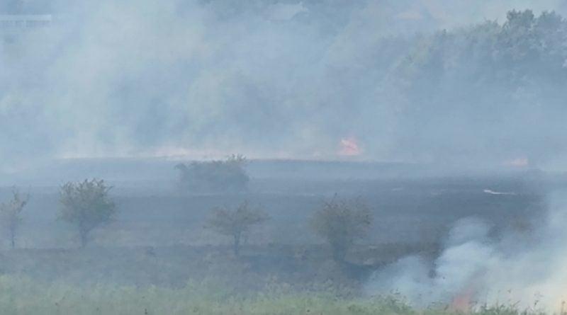 pozar zawady fot. pawel 3 800x445 - Wielkopolska: Strażacy z naszego regionu walczą z pożarem Biebrzańskiego Parku Narodowego