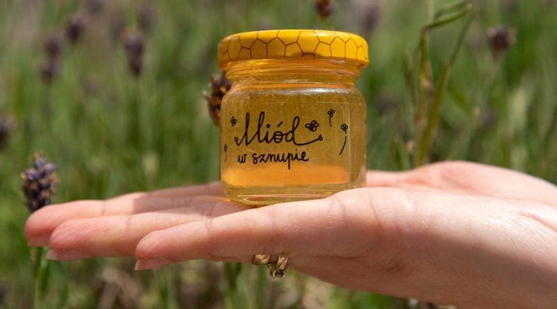 miod z pasieki na cytadelipic11016135215235467with ratio16 9 800x445 - Poznań: miód dla radnych od pszczół z... Cytadeli