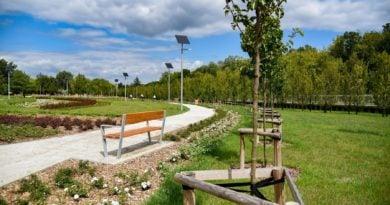 nowy park debiec 1 390x205 - W Poznaniu powstał nowy park (zdjęcia)!