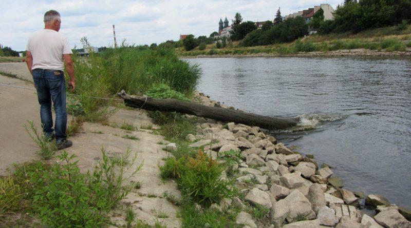sprzatanie smieci warta fot. ump 7 800x445 - Poznań: Czy w Wielkopolsce zabraknie wody? Naukowcy biją na alarm