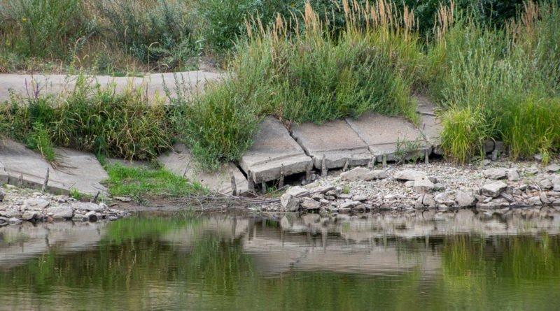 z biegiem warty i cybiny s. wachala 10 800x445 - Susza. Zobacz jak wyglądają poznańskie rzeki!
