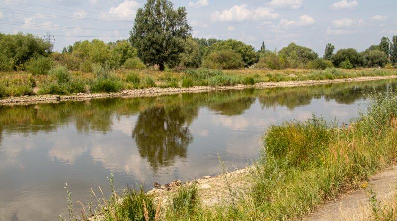 z biegiem warty i cybiny s. wachala 17 800x445 - Susza. Zobacz jak wyglądają poznańskie rzeki!
