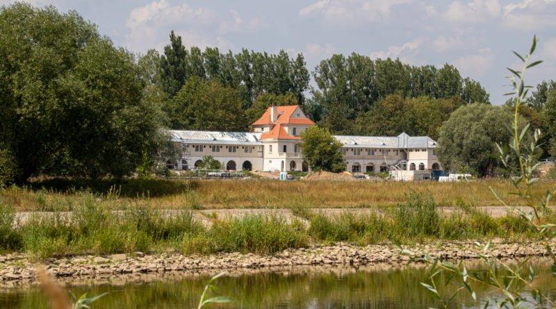 z biegiem warty i cybiny s. wachala 22 800x445 - Susza. Zobacz jak wyglądają poznańskie rzeki!